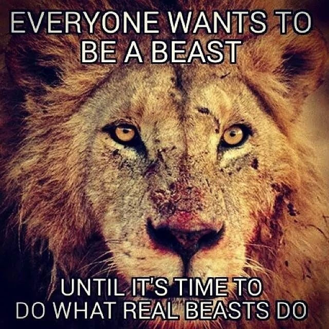 Lion-Everyone-wants-to-be-a-beast